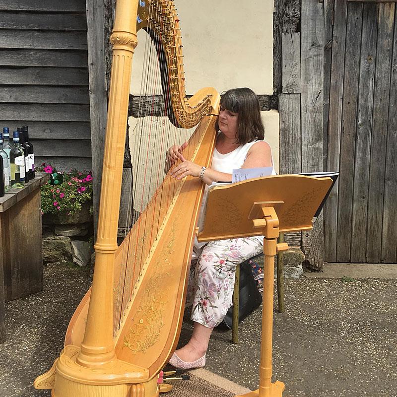 Musician - Christine Kinder