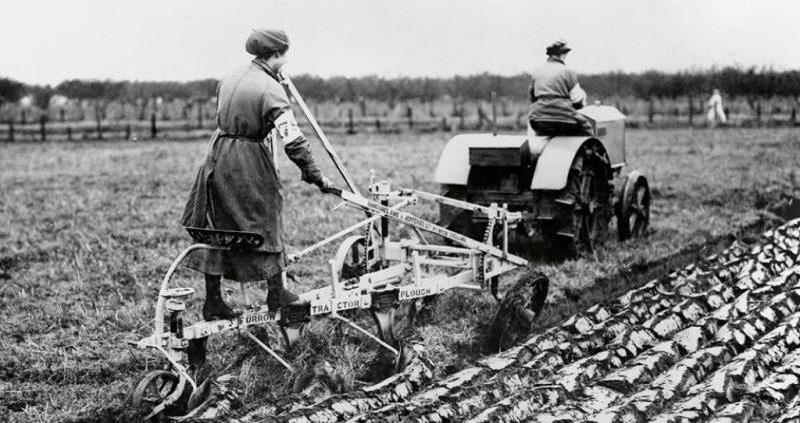 War Agriculture